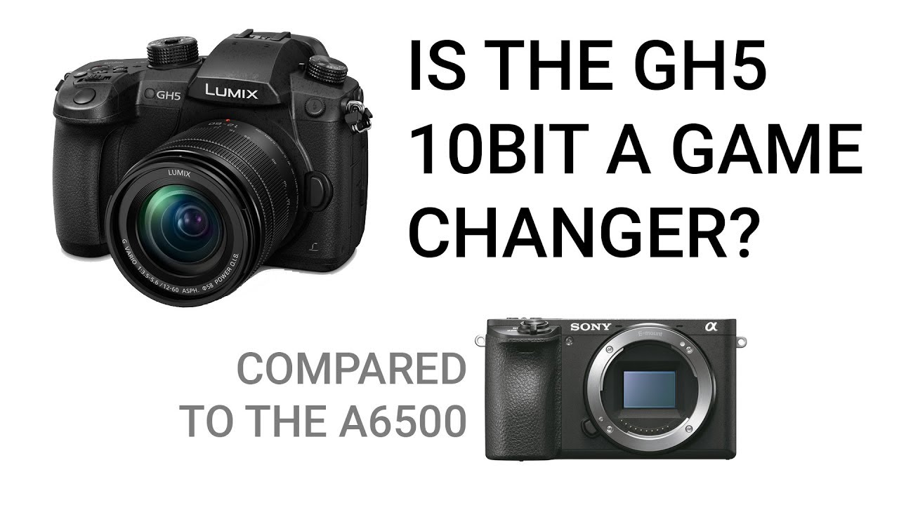 GH5 10-bit vs Sony a6500 8-bit Video - Can You Spot the Differences