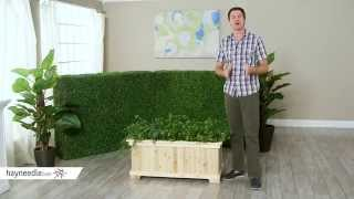 Coral Coast Rectangular Natural Wood Aster Patio Planter Box - Product Review Video