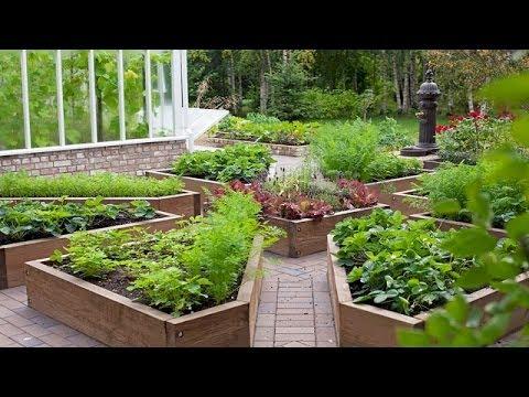Cмотреть Декоративный огород