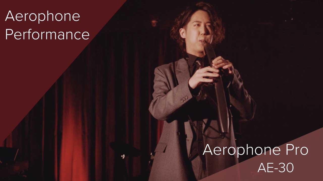 Roland Aerophone Pro AE-30 Performance