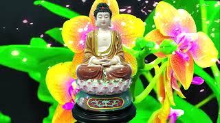 Nghe Tụng Kinh Này Không Còn Khổ Gia Đình Bình An ♥ Kinh Phật Màu Nhiệm