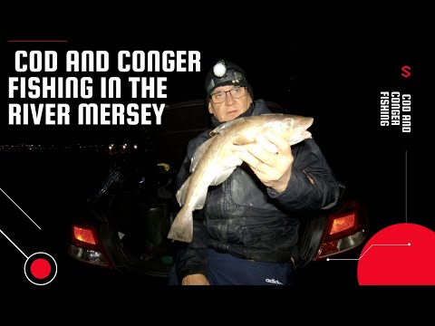 Codling and Conger