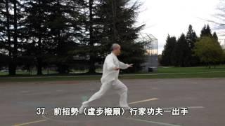 太極功夫扇正向 (2015.03.31)