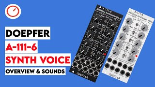 Doepfer A-111-6 Miniature Analog Synthesizer Overview - Gateway To Eurorack | SYNTH ANATOMY