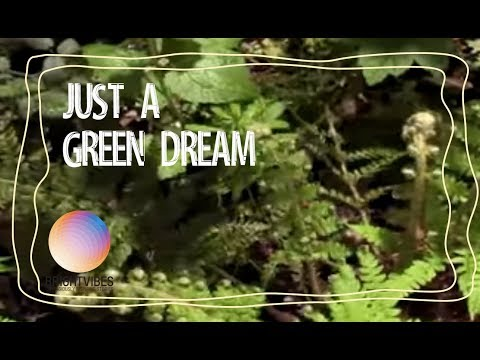 Sustainable Energy...just a green dream? Wrong!