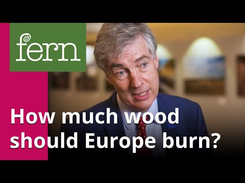 Interview with MEP Paul Brannen: how much wood should Europe be burning?