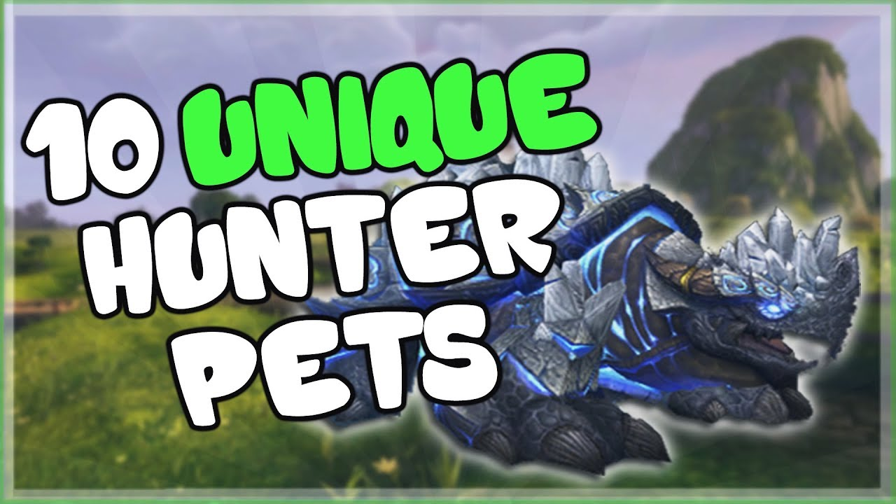 10 Unique And Cool Hunter Pets That Aren T Spirit Beasts For World Of Warcraft Youtube