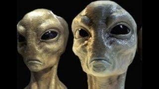 Директор NASA заявил о скором  вторжении инопланетян. Власти С Ш А давно контактируют с пришельцами.