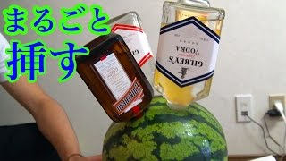 スイカを酒で浸して天然カクテル作ってみた! thumbnail