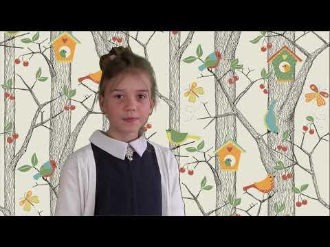 Житникова Настя, 11 лет  Михаил Яснов Мы и птицы
