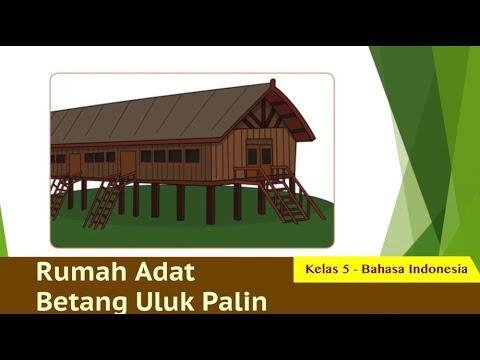 Kelas 05 Bahasa Indonesia Mengenal Rumah Adat Betang Uluk Pani Video Pelajaran Sekolah K13 Youtube
