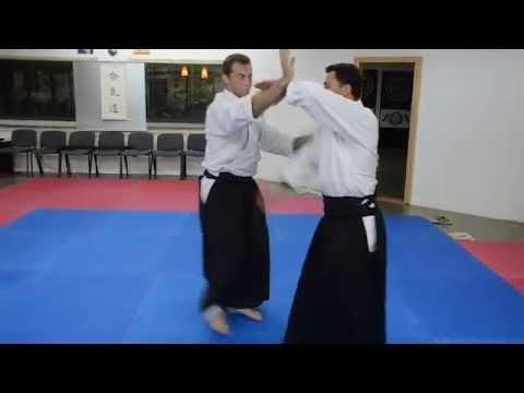 Aikido seminar Roberto Sánchez 6.Dan, Sarajevo 2014