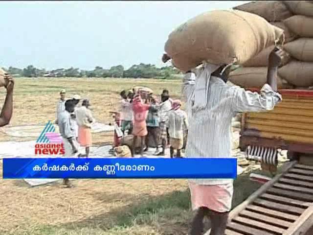 Paddy farmers in trouble: കര്ഷകര്ക്കിത് കണ്ണീരോണം