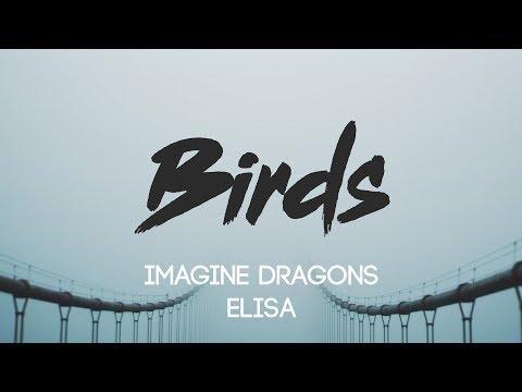 Imagine Dragons - Birds (Lyrics, Audio) Ft. Elisa