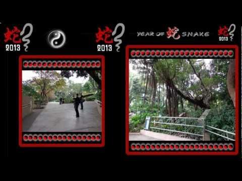 Shaolin tour Kowloon Park (HK)