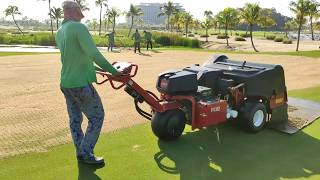 Green coring and topdressing - Legacy Golf Course Forest City Golf Resort