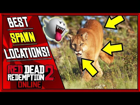 Wild Cougar Sim 3D Android Gameplay #2 from YouTube · Duration:  13 minutes 53 seconds
