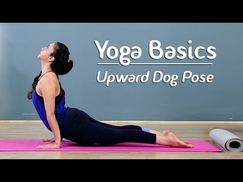 Upward-Facing Dog Pose | Urdhva Mukha Svanasana | Yoga For Beginners Yoga With AJ