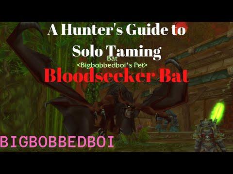 Bloodseeker Bat : Hunter Solo Tame - ZG Classic WoW Tutorial