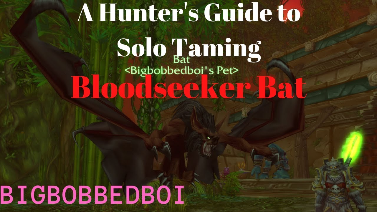 Bloodseeker Bat Hunter Solo Tame Zg Classic Wow Tutorial Youtube