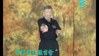 Ip Ching - Siu Lim Tau 葉正 - 小念頭 thumbnail