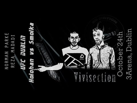 The MMA Vivisection - UFC Dublin: Holohan vs. Smolka picks, odds, and anlysis