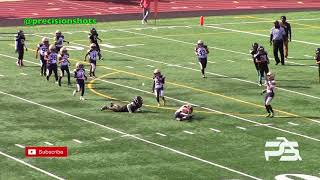 Auburn Panthers 8U vs. Seatac Sharks Highlight Reel 2018