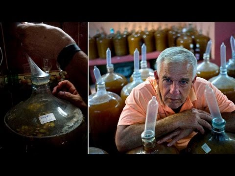 Cuban winemaker uses condoms for fermenting fruits
