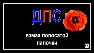 ДПС, остановка, г. Москва, 09 сентября 2017 / Фары, МАК, террорист, аптечка