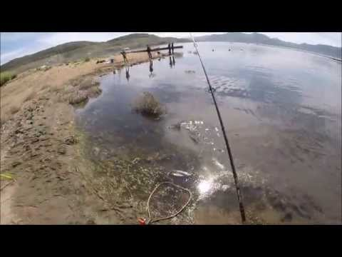Warbaits striper fishing diamond valley lake doovi for Diamond valley lake fishing