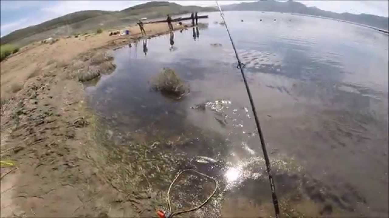 Diamond valley lake trout fishing 3 18 2015 youtube for Diamond valley lake fishing report