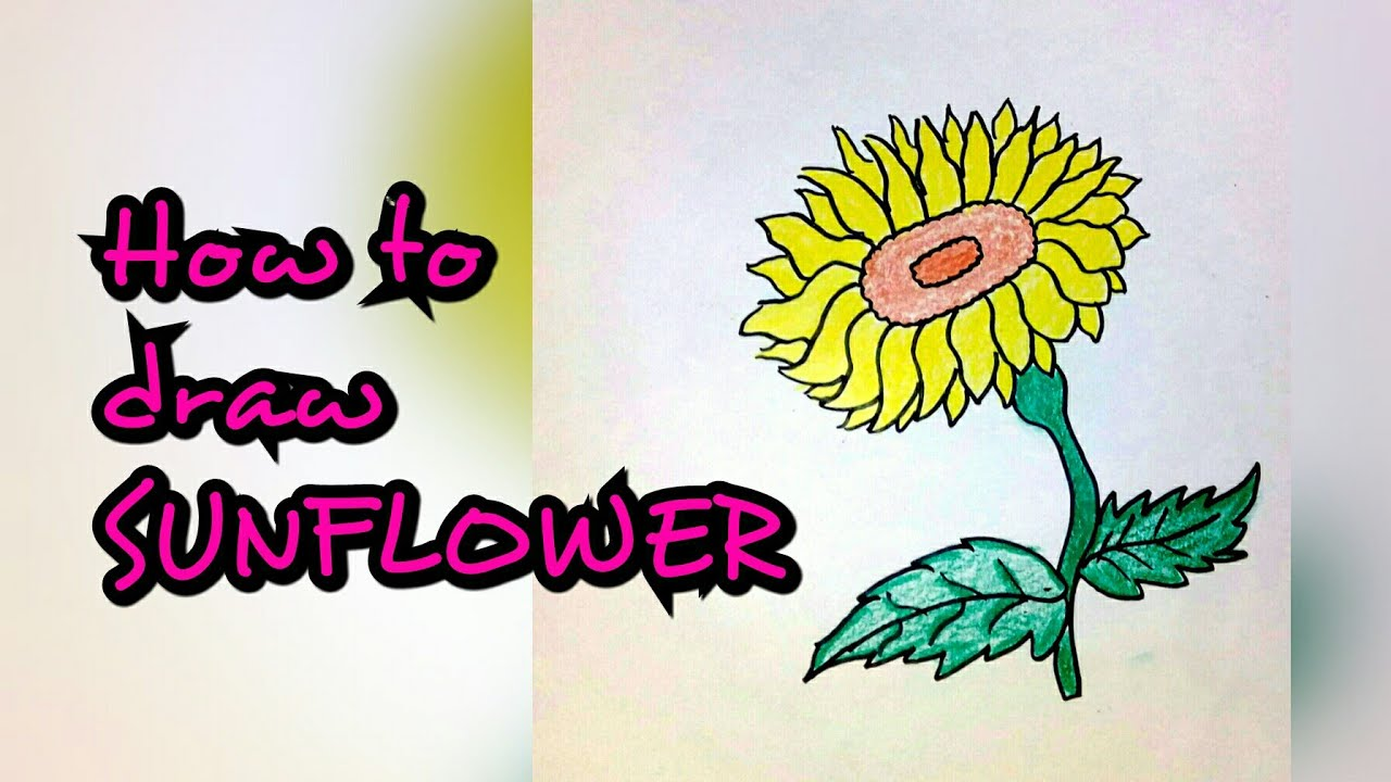 Drawing Tutorial How To Draw Sunflower Flower Step By Step