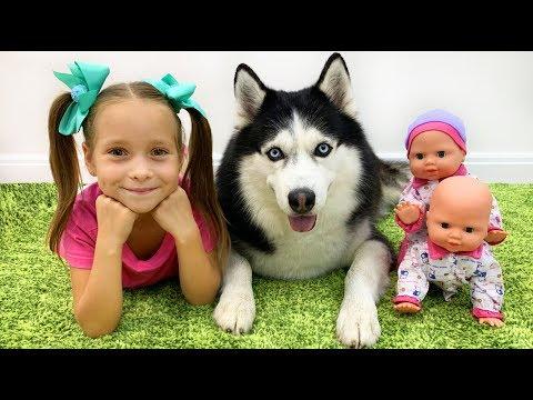 София и её Любимые Игрушки, Куклы и Собака