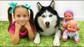 София и лучшие серии про Любимые Игрушки и Собаку