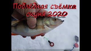 Подлёдная съёмка рыбалки на окуня 2020 Новое видео