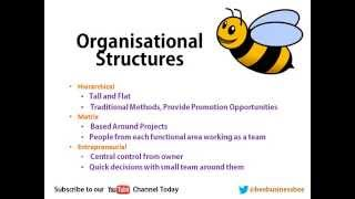 Bee Business Bee Organisational Structures Presentation