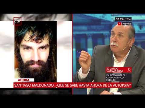 Santiago Maldonado: ¿Qué se sabe hasta ahora de la autopsia?
