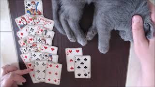ЧТО МЕНЯ ЖДЕТ В БЛИЖАЙШЕЕ ВРЕМЯ? Онлайн гадание на игральных картах.