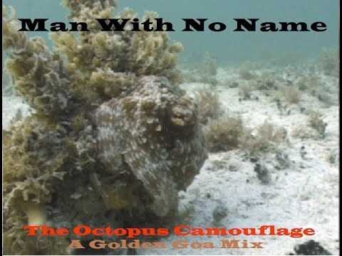 Man With No Name - The Octopus Camouflage [A Golden Goa Mix] ᴴᴰ ⚅