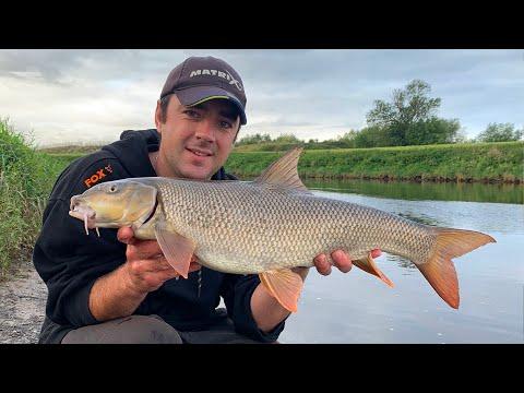 Barbel Fishing - The HARDEST FIGHTING Freshwater Fish?