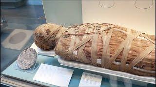 Cleopatra Mummy!! | Sor Wankate