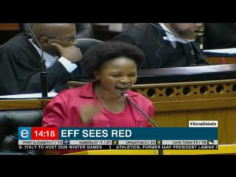 EFF's Sona debate reply