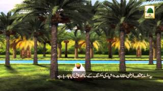 Malumat Hi Malumat(01)- Khujoor Kay Fawaid Aur Kapray Pak Karnay Ka Tariqa