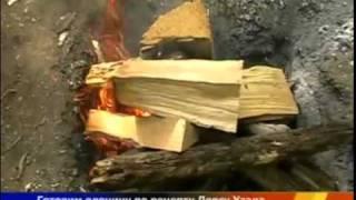 Запекаем оленину в яме на углях в тайге
