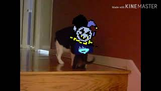 DELTARUNE Jevil meme  (when your the only one left and you ran out if healing items)