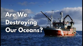 Are We Destroying Our Oceans? #SeaSpiracy