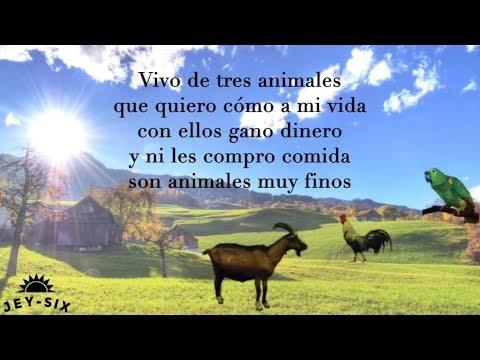 Mis tres animales - Los Tucanes de Tijuana (Letra)