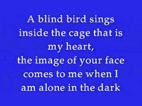 DELA by Johnny Clegg (Lyrics)
