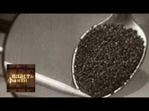 Всемирная история кофе / Власть факта / Телеканал Культура
