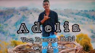 Judul lagu:Adelia cipt:Adi Bere Bein VOC:Rangga kehi-ABG Channel Malaka (Adi Bere Bein Group Malaka)